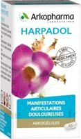 ARKOGELULES HARPAGOPHYTON, 150 gélules à Libourne