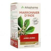 ARKOGELULES MARRONNIER D'INDE, gélule à Libourne