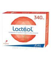 LACTEOL 340 mg, 10 gélules à Libourne
