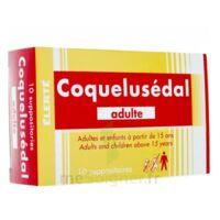 COQUELUSEDAL ADULTES, suppositoire à Libourne