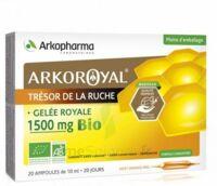 Arkoroyal Gelée royale bio 1500 mg Solution buvable 20 Ampoules/10ml à Libourne